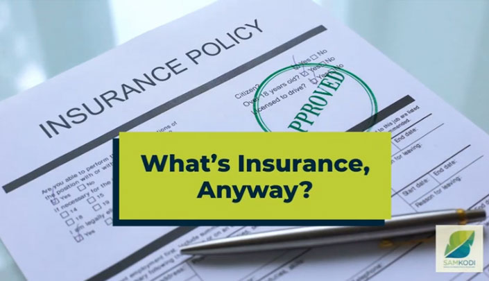 What's Insurance, Anyway?